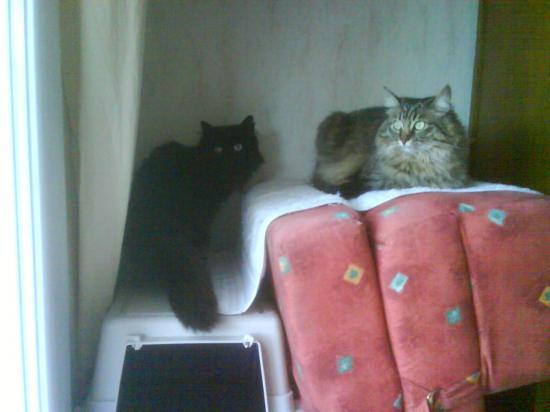 Doudou & Mimi